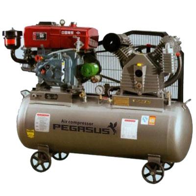 Máy nén khí chạy bằng dầu Diesel Pegasus  TM-W-1.6/8-500L