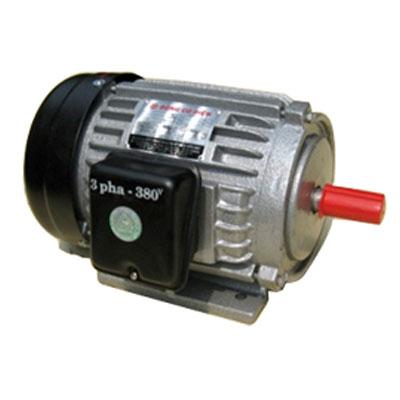Động cơ điện 3 phaTiến Đạt 3HP KN-3/380