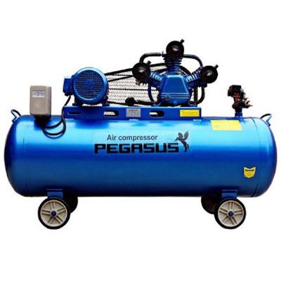 Máy nén khí chạy bằng dầu Diesel Pegasus TM-W-1.0/8-500L